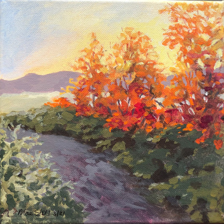 Fall & The Alleghenies 2