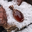 Thumbnail: Amber-colored Agate