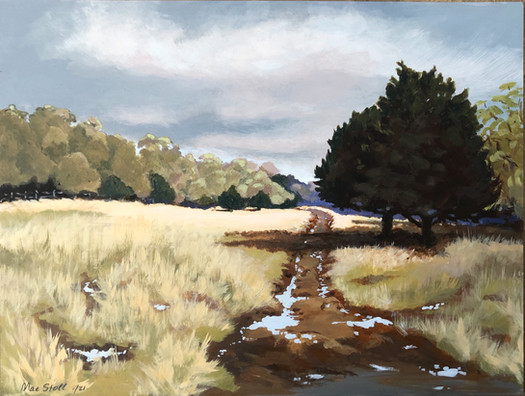 Near Fischer, TX (in private collection)
