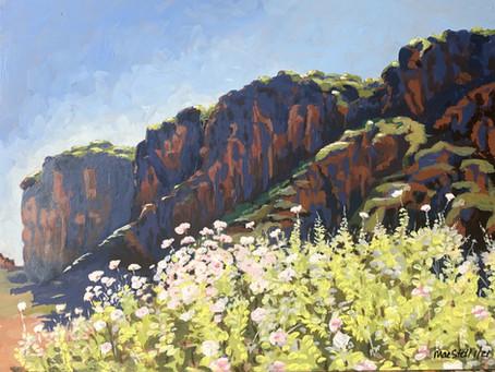 Red Cliffs near Socorro