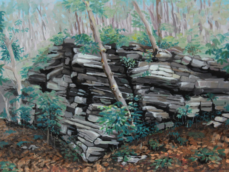 Rocks & Rhodies at Goshen Pass - In private collection)