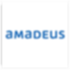 Partner_logo_Amadeus.png