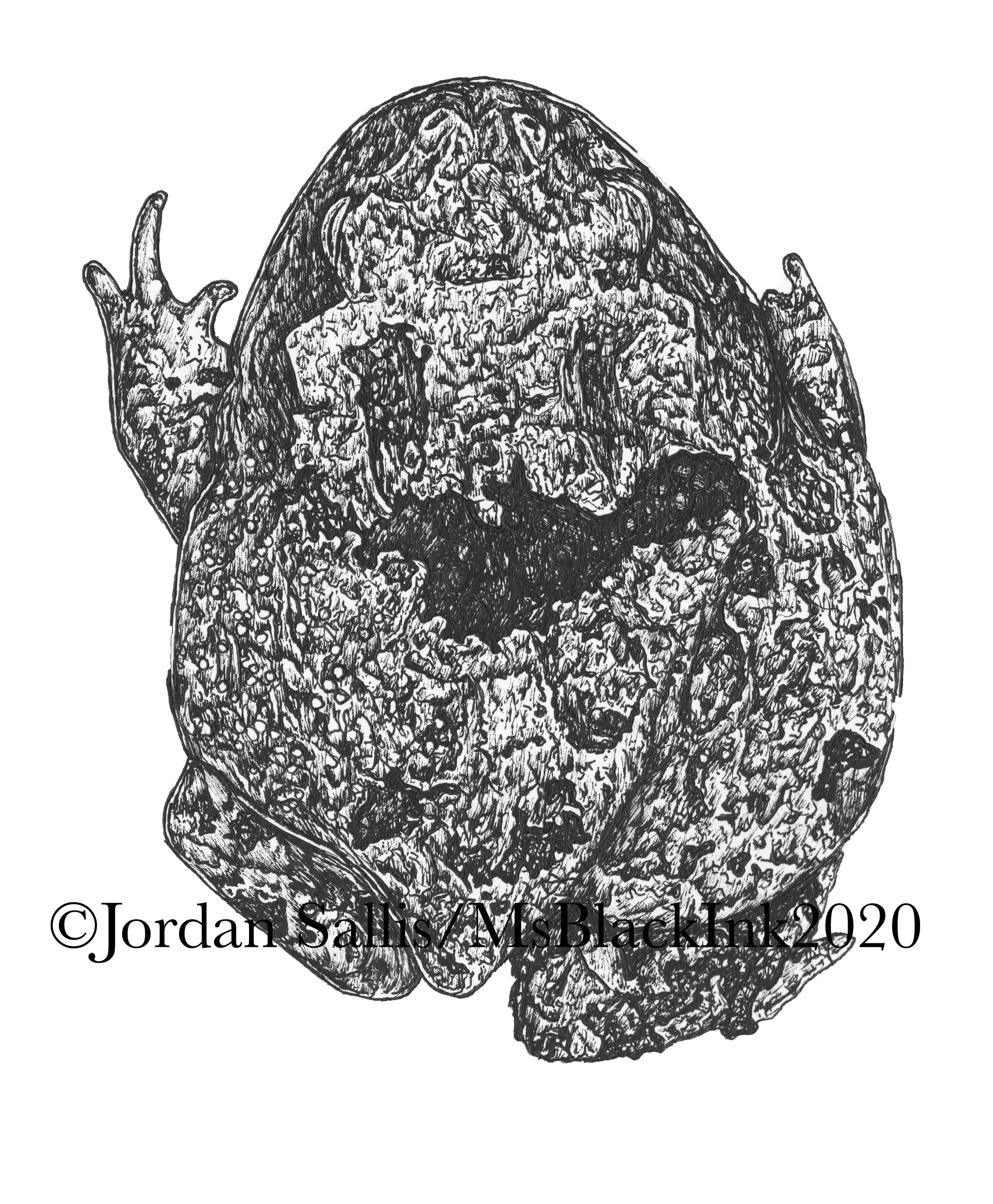 Cranwell's Horned Frog