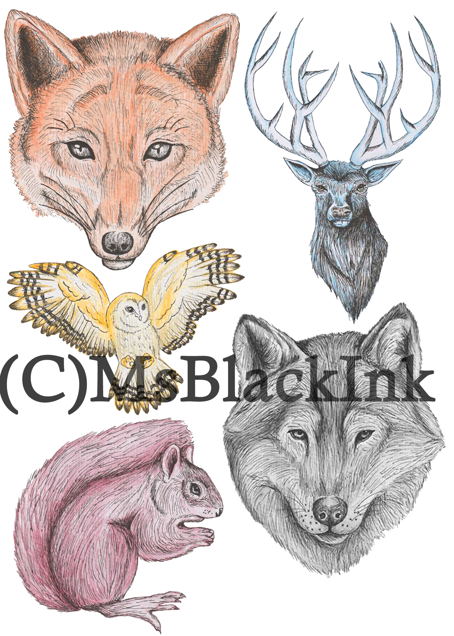 Fox, Stage, Wolf, Squirrel, Owl