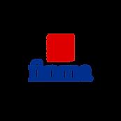 logo finap.png