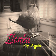 Fly Again Cover Ilonka 2016 Final.jpeg