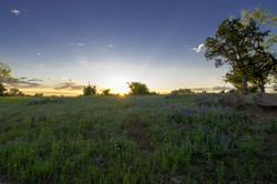 Sunrise on Willow City Loop
