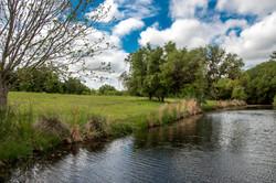 Salt Branch Creek