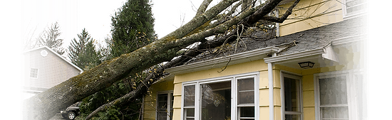 storm-damage1.png