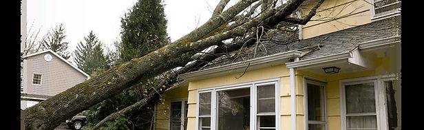 storm-damage1.png