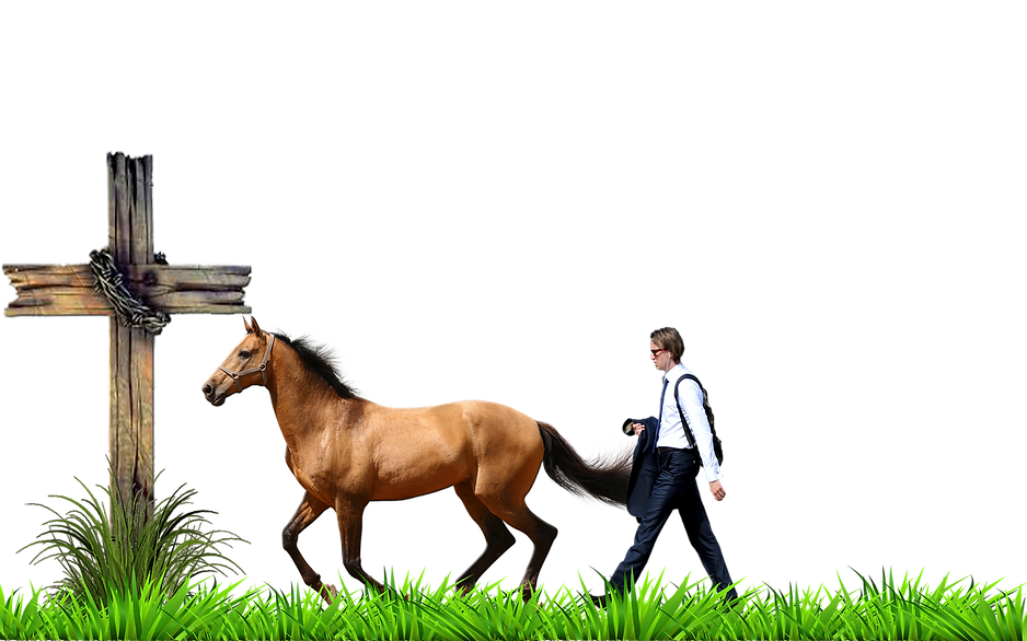 lead horse.png