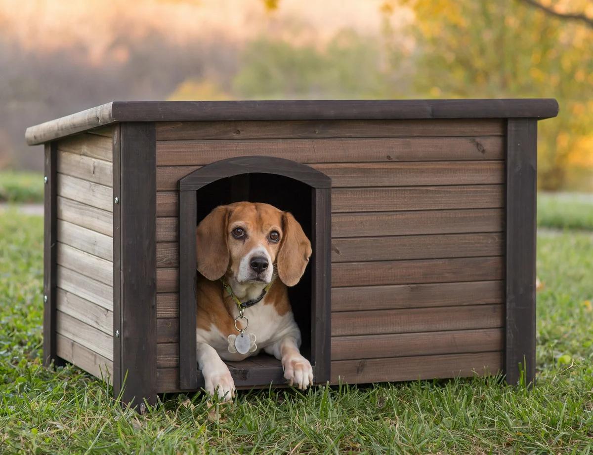 Будка, вольер для собаки в Ступино, Кашире, Озерах, Зарайске на заказ