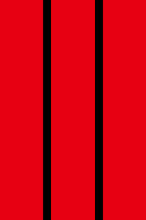 4K 空白銅版紙春聯(純紅色)12張
