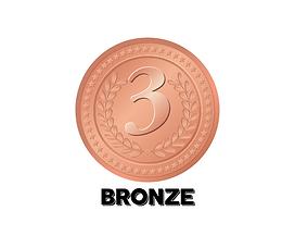 BRONZE (4).png