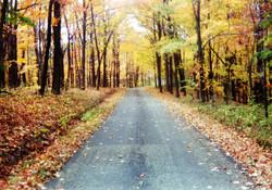 scioto trail road.jpg