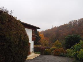 Венгрия. Жилой дом в 300 м2...там где горы бесконечны...как и мои клиенты!