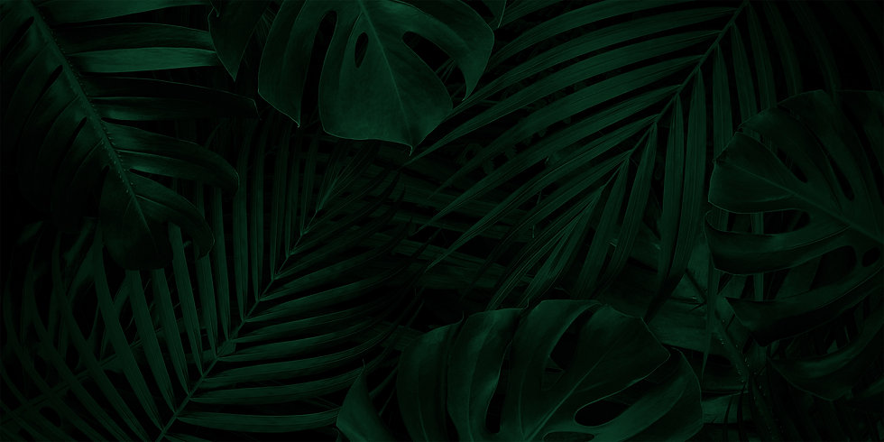 tropical-leaves-background-with-copy-space greeen.jpg