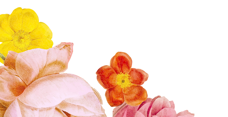 flowers-1.png