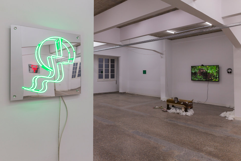 27_Pet Cemetery, 2019, Installation View
