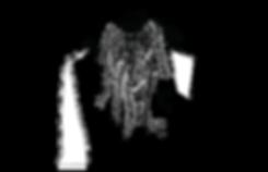 3.Fern_Beard_Polycelium_Pass.png