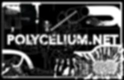 2.SpaceRat_Polycelium_Pass.png
