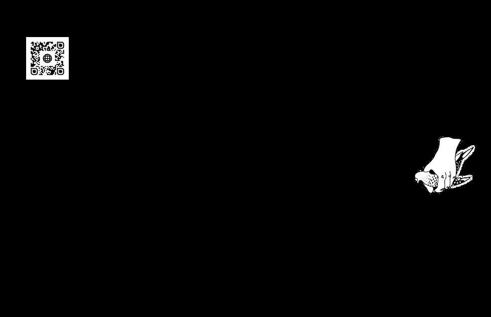 5.Pigeon_Suskid_Polycelium_Pass_SideB.pn