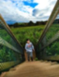 maze bridge kid boy steps