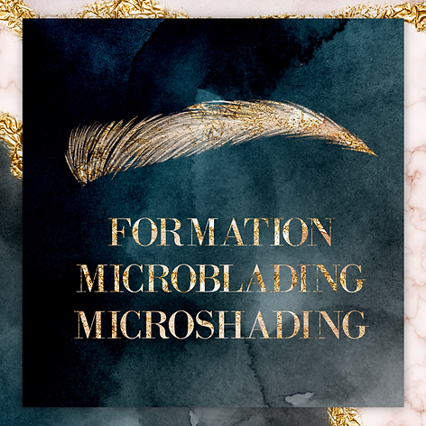 ACOMPTE FORMATION MICROBLADING ET SHADING
