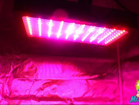 UV Lighting For Growing Cannabis!