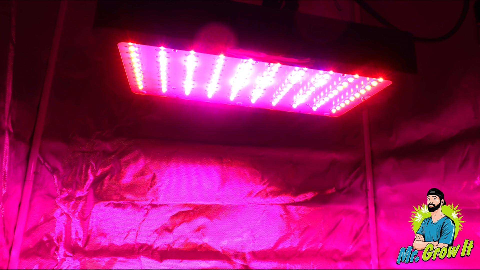 Uv Lighting For Growing Cannabis