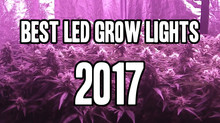 Top 10 Best LED Grow Lights To Buy In 2017