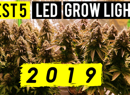 Best 5 LED Grow Lights 2019   5x5 Coverage Area