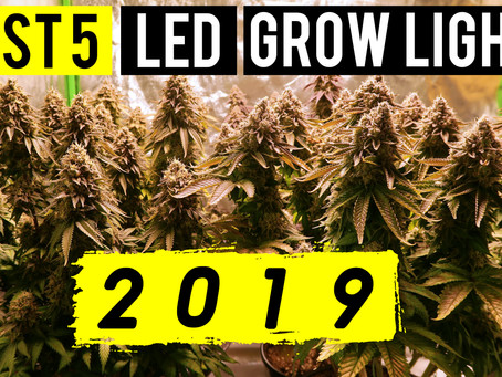 Best 5 LED Grow Lights 2019 | 5x5 Coverage Area