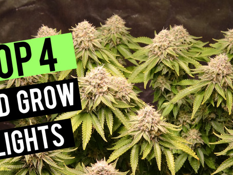 Top 4 LED Grow Lights 2019 | 2x2 Coverage Area