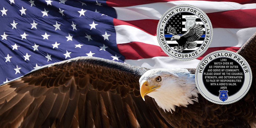 Just the eagle with coins attached.jpg