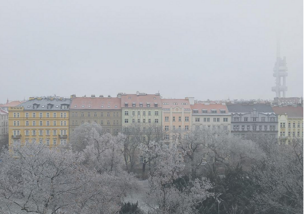 View from a Slezska Quad