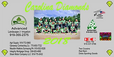 Softball team Banner