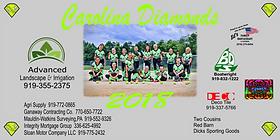 Softball team Banner