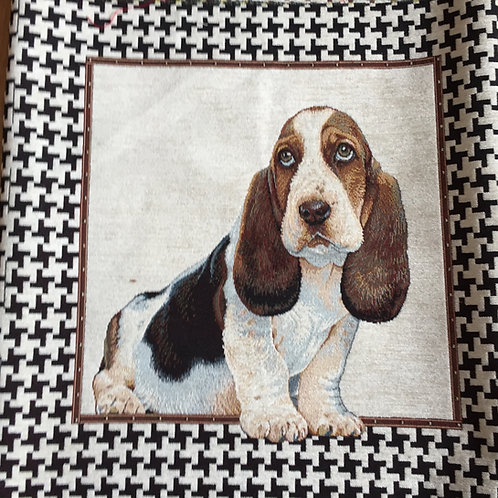 Beagle noir