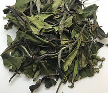 Organic White Tea 2nd Flush Japanese Tea