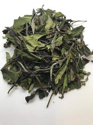 Organic White Tea (2nd Flush)