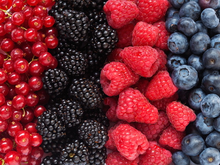 HEALTH TIP: 5 Functional Foods to Eat Everyday