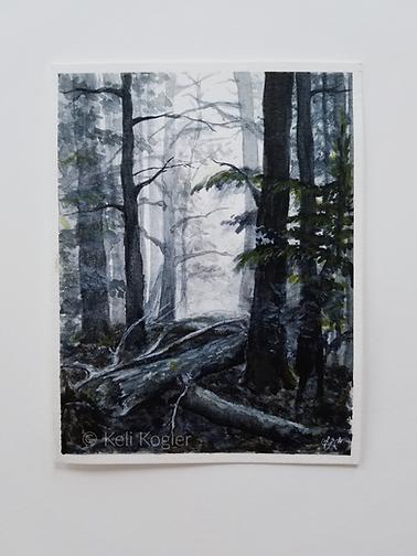'Foggy Wood' by Keli Kogler