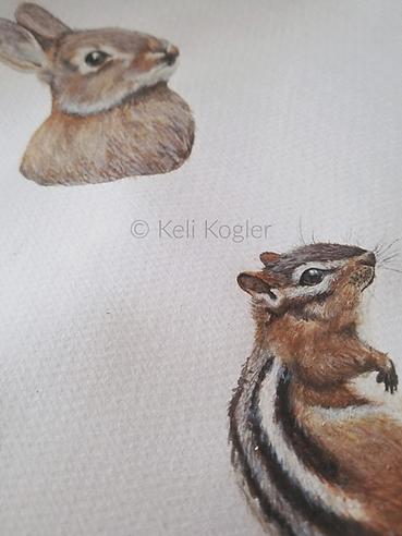 A watercolor + gouache chipmunk and rabbit