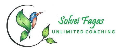 Solvei Logo 2.png