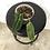 Thumbnail: Anthurium Warocqueanum #2037