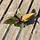 Thumbnail: Philodendron Prince of Orange