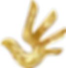 Gold-Dove-Hand_edited_edited.png