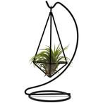 Real Plant 3.jpg
