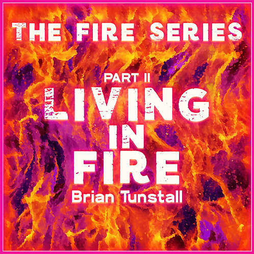 The Fire Series: Living In Fire Part II by Brian Tunstall
